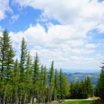 Ein wunderschöner Ausblick auf die Wiener Alpen