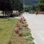 in El Bolson - hübsche Blumenrabatten