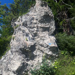 Wenn man sich an diesem markanten Felsen orientiert, kann man den Einstieg in den Wald kaum verfehlen