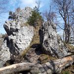 Blick zurück auf den Gipfelbereich am Rückweg