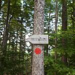 Nachdem wir die Forststraße verlassen hatten, war der Maisenkögerl Gipfel schon angeschrieben