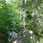 Neben dem Hauptweg gibt es eine ganze Reihe von kleinen Pfaden, die Richtung Gipfel führen