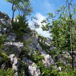Weiter entlang der Felsen geht es auf den Gipfel zu
