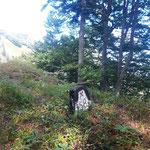 Der weitere Wegverlauf führte uns zum eigentlichen Kampermauer Gipfel - ein kleiner Waldgipfel mit Steinmarkierung