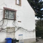 BESTAND Wohnhaus Gutach
