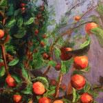 Zwierende oranje appels. 50x70cm. olie op linnen. 2018.