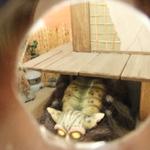 妖怪のいる風景 鬼太郎茶屋