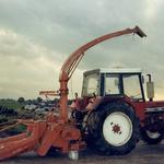 IHC 1255