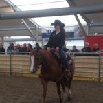 Chantale Wellauer mit der QH-Stute Lynn von Andrea Gerber.
