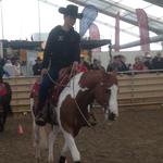 Andrin Kälin mit dem Pferd von Maya Pfister.