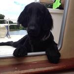 Souky ist auf einem Flussboot