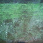 campo energético VIII, 2012 · mixta / tela · 140 x 220 cm