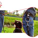 Hund-am-gürtel-mit-kurzer-Leine