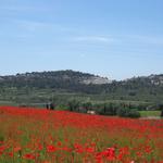 Wandern Vaucluse