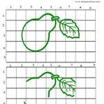método de observación por cuadrícula numerada, dibujo pera partida