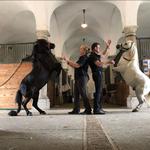 Emil und Lukas in Schlosshof