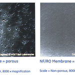 Porous dense and nonporous film