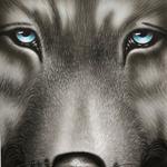 Wolf, A3, Acryl auf Papier