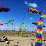 Mondial du vent Leucate -La Corbiere Vacances