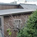 外観、金属製のまっすぐな屋根が増築部分です。