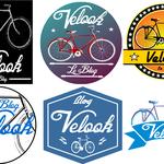 Quel vélo pour VELOOK?