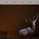 Eberhöfer Horst, wildlife photographer - design del sito web