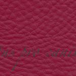 Lectus pro canibus® rubin Bestellnummer lpc-57131