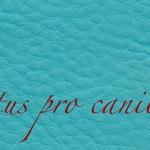 Lectus pro canibus® türkis Bestellnummer lpc-45141