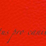 Lectus pro canibus® kirschrot Bestellnummer lpc-36131