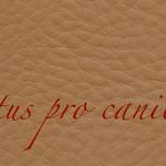Lectus pro canibus® goldbraun Bestellnummer lpc-26141