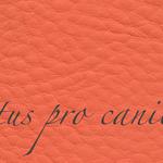 Lectus pro canibus® koralle hell Bestellnummer lpc-95141