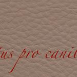Lectus pro canibus® haselnuss Bestellnummer lpc-17131