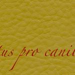 Lectus pro canibus® schlamm Bestellnummer lpc-85141