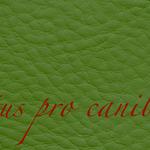 Lectus pro canibus® dunkelgrün Bestellnummer lpc-66141