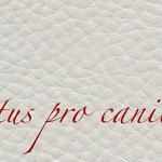 Lectus pro canibus® hellgrau Bestellnummer lpc-36141