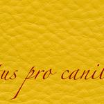 Lectus pro canibus® senf Bestellnummer lpc-52631