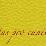 Lectus pro canibus® hellgrün Bestellnummer lpc-56131