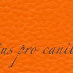 Lectus pro canibus® orange Bestellnummer lpc-16141