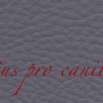 Lectus pro canibus® grau Bestellnummer lpc-46141
