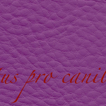Lectus pro canibus® lila Bestellnummer lpc-55141