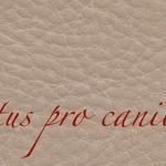 Lectus pro canibus® kiesel Bestellnummer lpc-45131