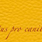 Lectus pro canibus® sonnengelb Bestellnummer lpc-65141