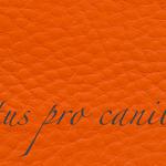 Lectus pro canibus® dunkelorange Bestellnummer lpc-42631