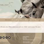 www.double-w-ranch.de