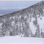 ①北八甲田ロープウエーで山頂駅の田茂萢(たもやち)から西側一帯は樹氷で覆われている。
