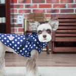 Pinkaholic Dotty Hundemantel