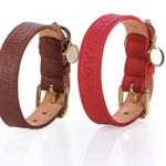 Trussardi Hundehalsband Collore