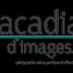 Création de logo Dans le 1000, agence de comminication en Loir-et-Cher, Sologne, Région Centre Val de Loire - Acadiau d'Images pour Alexandre Roubalay