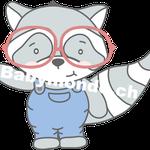 Waschbaer Bub mit Brille (Daw140978639)
