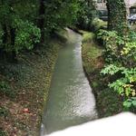 Die Alm, ein harmloser Bach, der Stadt und Umgebung durchzieht